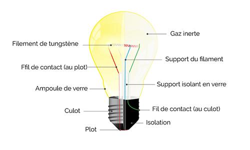 Par opposition aux LED, les lampes à incandescence utilisent un filament de tungstène porté à chaud par le courant électrique