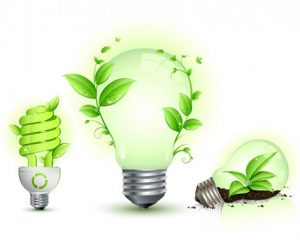 ECORESPONSABLE ELUMINO LAMPES LED